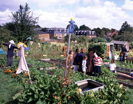 The Rosendale allotments in South East London